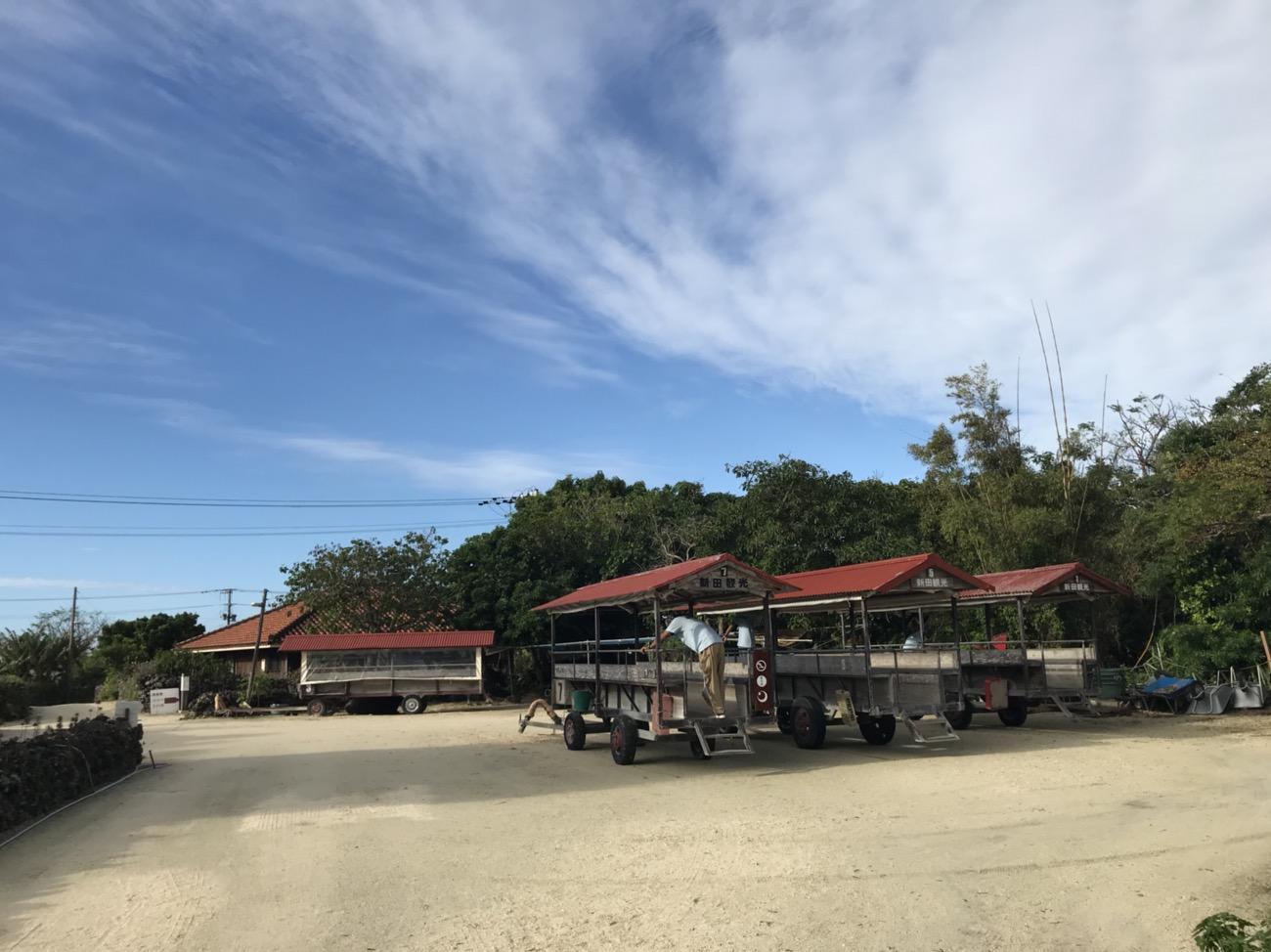 竹富島観光おすすめ 水牛車 新田観光
