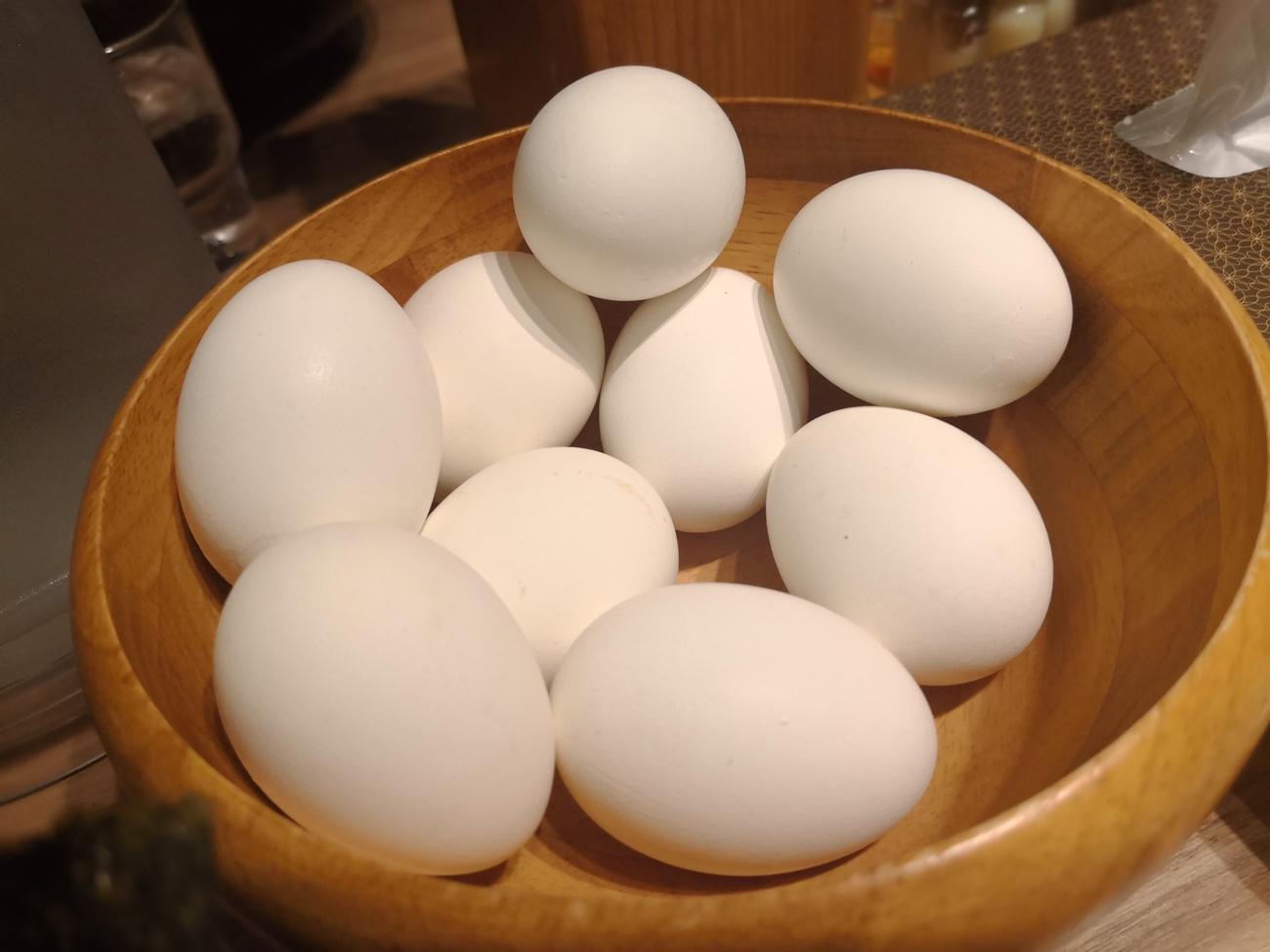 ゆで卵食べ放題 新千歳空港ラーメン道場 白樺山荘