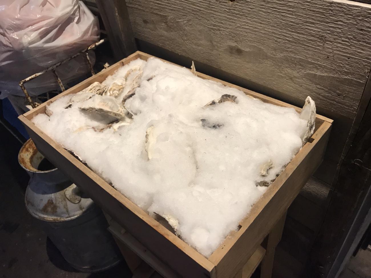 生牡蠣もある北海道産ひつじ肉 炭火兜ひつじ すすきのジンギスカンおすすめ