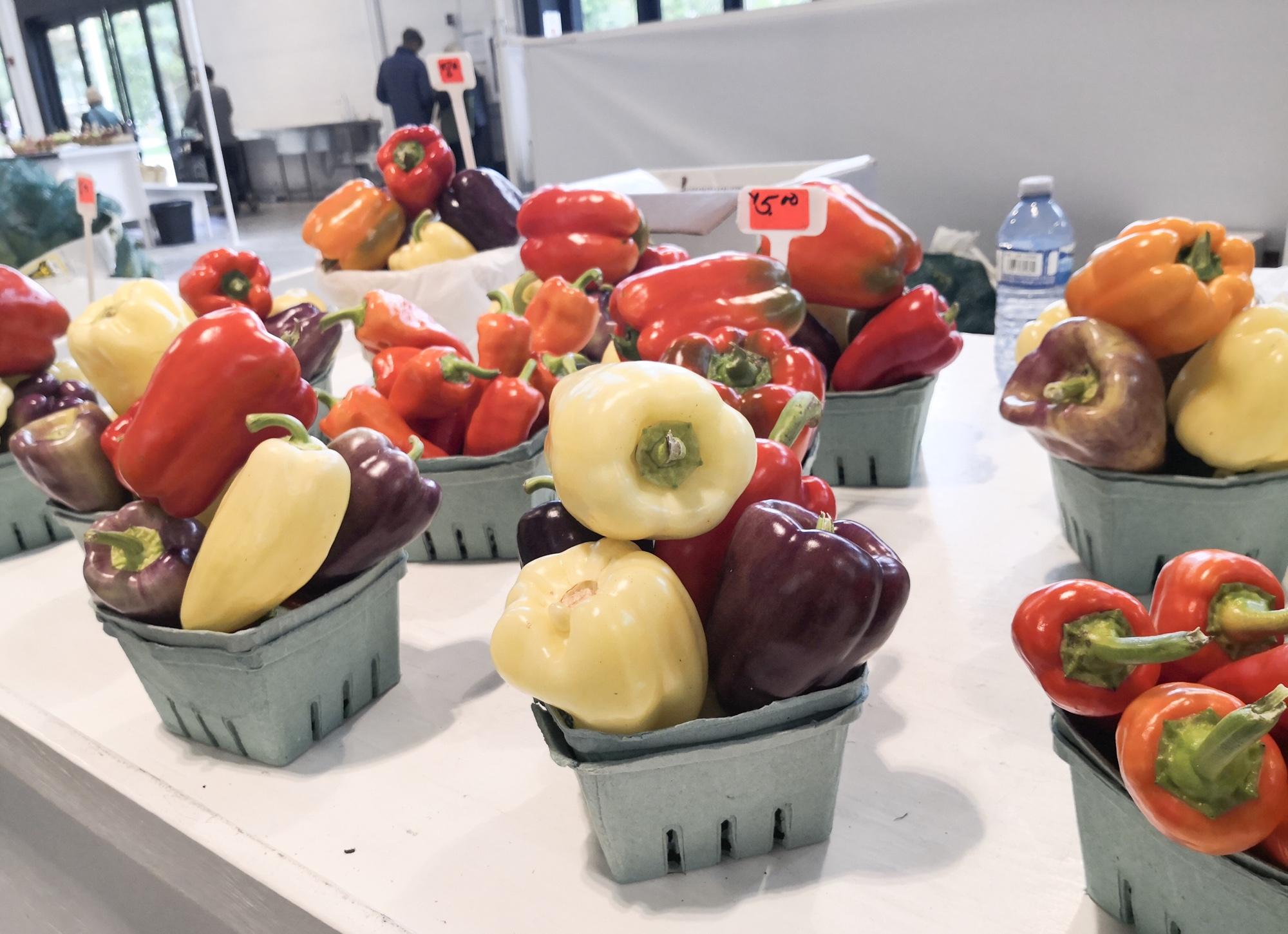 野菜ルグランマルシェ ケベックシティ