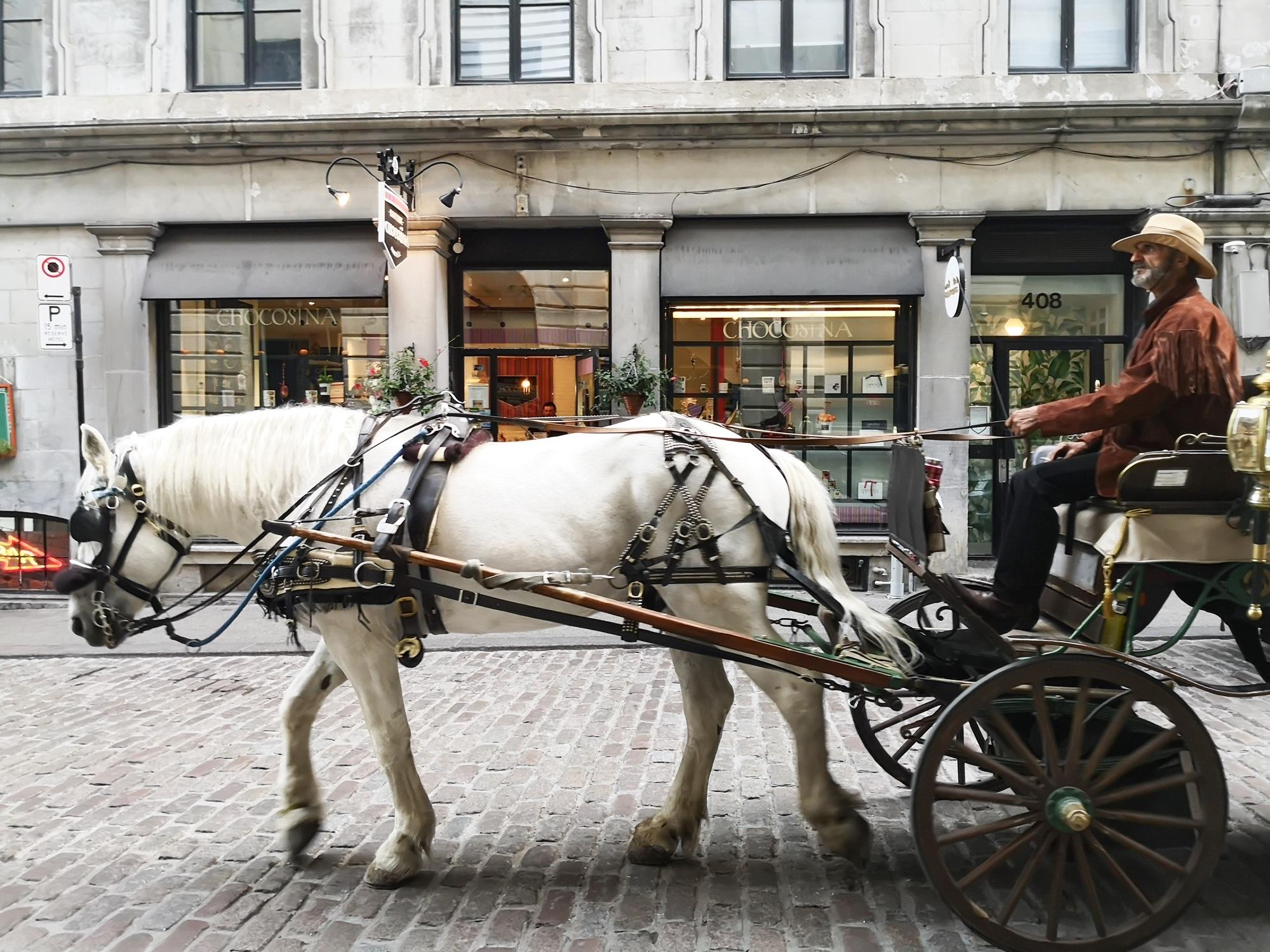 モントリオール馬車